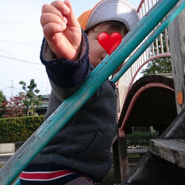 ようやく冬らしくなってきた今日この頃 子どもたちは今日も元気に歩きます!走ります!遊びます︎︎** #公園遊び #電車のみえる保育園 #鹿児島市 #かごしま #東谷山 #企業主導型保育園 #小規模保育園 #一時預かり #完全給食 #アドナース